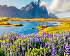 8D5N SCENIC ICELAND IN SUMMER【SUMMER MAY - AUG】